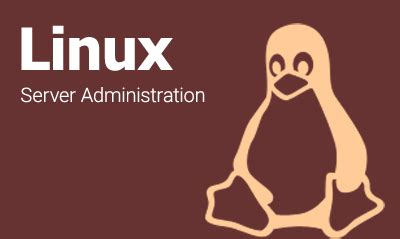 Linux Administrator Resume Sample Two